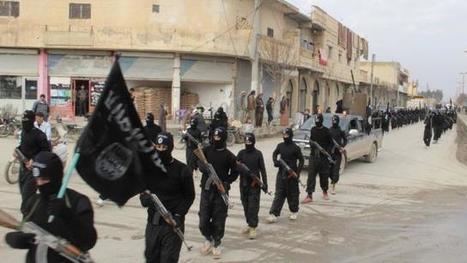Djihad. D'anciens militaires français, djihadistes en Irak et en Syrie | SAUVER LA FRANCE | Scoop.it