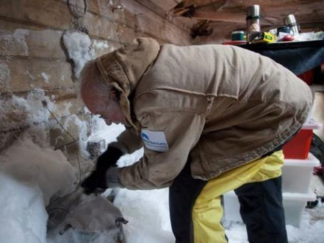 Antarctic restorers uncover century-old artifacts left by early explorers   Egypt Independent   Kiosque du monde : Océanie   Scoop.it