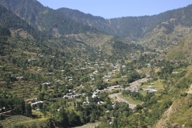 Tight budgets, smuggling chip away at Kashmir's forests - Reuters AlertNet   Lal Suhanra National Park   Scoop.it