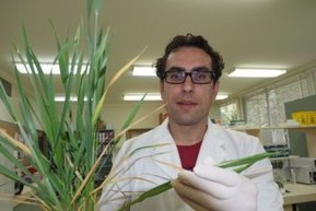 Western Victorian scientists make world-first climate change finding | Plant Pathology | Scoop.it