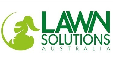 Mistakes that are hurting your lawn – Part 1 | Daleys Turf | Lawn Turf Supplier Queensland Australia | Scoop.it