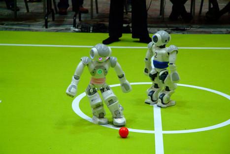 Vorbild Honigbiene: Roboter lernen ähnlich wie Insekten - Deutsche Mittelstands Nachrichten | Lernen auf der Baustelle | Scoop.it