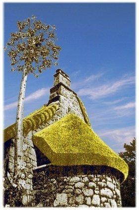 Accueil Chaume - Toit en Chaume et Construction Paille - Toiture en Chaume - Bâtiment écologique | Maison passive | Scoop.it