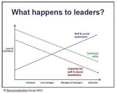 Leadership l Social Decision Making | Embodied Leadership | Scoop.it