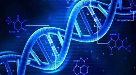 La biologia di nuova generazione: quantitativa e computazionale | Teaching and Learning | Scoop.it