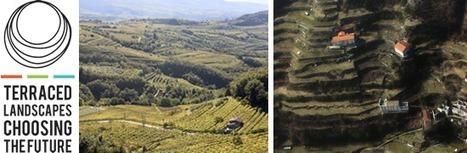 Regione del Veneto - Incontro Internazionale Paesaggi Terrazzati 2016 | Urbanistica e Paesaggio | Scoop.it