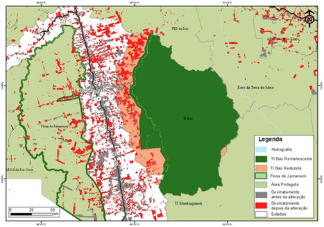 Sharp jump in deforestation when Amazon parks lose protected status | our biodiversity | Scoop.it