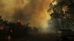 Heat is on Abbott government over climate change as world turns | smh.com.au | Bees | Scoop.it