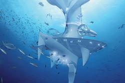 SeaOrbiter, un projet porté par un consortium industriel | bpm | Scoop.it