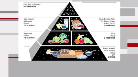 Bye bye food pyramid, welcome plate icon   Charliban Worldwide   Scoop.it