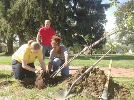From the ground up: FSU students, citizens plant trees | Tree Campus USA | Scoop.it