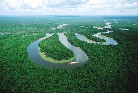Pulse of the Amazon | Rainforest EXPLORER:  News & Notes | Scoop.it
