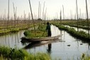 Myanmar's Inle Lake Shows Bridge to Ancient Hydroponic Farming Systems | Vertical Farm - Food Factory | Scoop.it