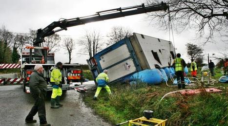 Leuhan : un camion transportant des porcs se renverse   Ma Bretagne   Scoop.it
