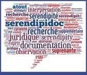 Le concept de sérendipité | Documentation & Information légale | Scoop.it