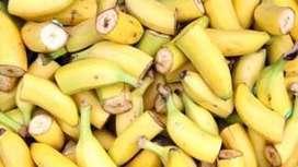 The imminent death of the Cavendish banana and why it affects us all - BBC News | Geography | Scoop.it