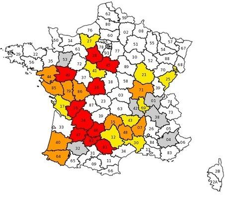Sécheresse : des restrictions d'eau dans une trentaine de départements | Gestion des services aux usagers | Scoop.it