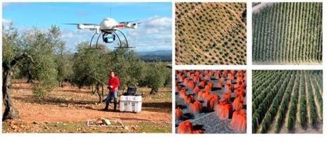 Nuevo sistema del @CSIC cartografía árboles de forma precisa mediante drones   Agricultura   Scoop.it