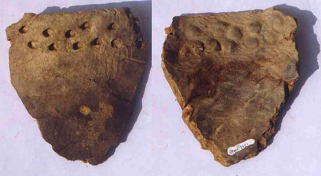 Early pottery in China | Agricultural Biodiversity | Scoop.it