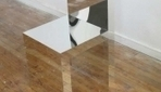 Reflective Furniture 'Disappears' In Rooms - DesignTAXI.com | The brain and illusions | Scoop.it