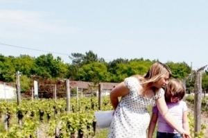 Un vigneron qui sort des sentiers battus   Oenotourisme   Scoop.it