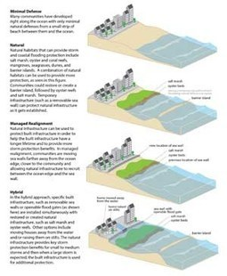 NOAA study finds marshes, reefs, beaches can enhance coastal resilience   Texas Coast Living   Scoop.it