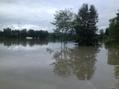 Inondations dans le Sud Ouest: les agriculteurs de Dordogne ... - France Bleu | Agriculture en Dordogne | Scoop.it