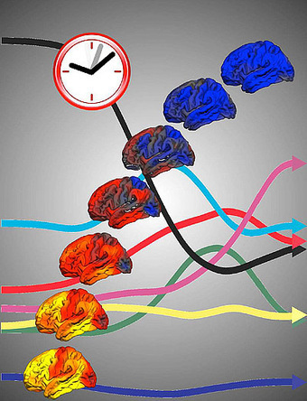 Multi-dimensional Brain Clock Can Measure Child's Age With 92% Accuracy | Amazing Science | Scoop.it