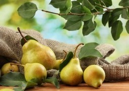 5 reasons to eat this fruit every day | Health News | Scoop.it
