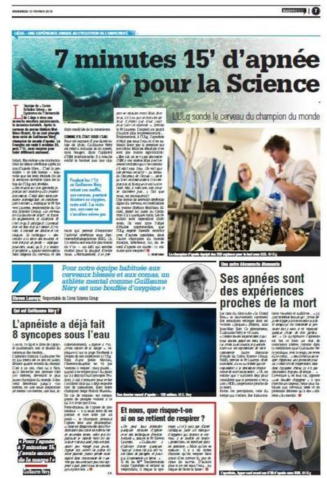 La Meuse | Liège: l'incroyable cerveau du champion du monde Guillaume Néry en apnée (7'15''), sondé par le Coma Science Group de L'ULg | L'actualité de l'Université de Liège (ULg) | Scoop.it