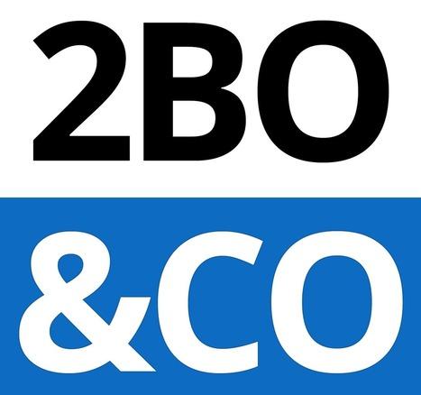 Offre d'emploi Développeur PHP/HTML5/CSS3 (H/F) chez 2BO&CO   Web Increase   Scoop.it