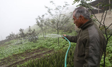 Peru's fog catchers net water supplies | Local Economy in Action | Scoop.it