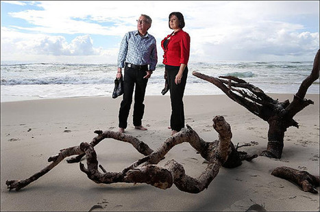 Coalition could feel beaches fallout - Gold Coast Bulletin News | Surfing News | Scoop.it