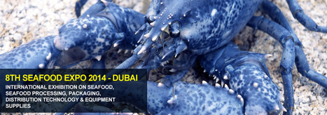 8th Seafood Expo 2014 – Dubai, UAE - 8-10th September 2014 | Fish in Demand -Aquaculture-and-More by Youmanitas | Scoop.it