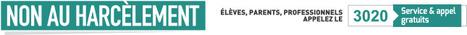 Cahier d'activités- Secondaire : Outils et séquences pédagogiques | Non au harcèlement | Bulletin de veille du CDI - Lycée Marie Curie | Scoop.it
