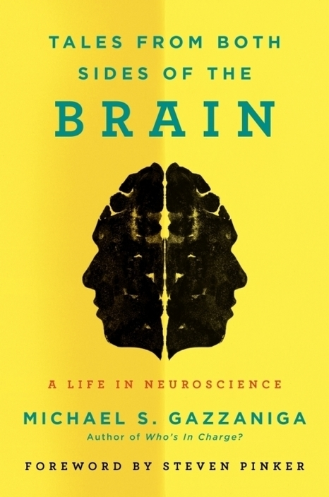 Tales From Both Sides of the Brain - The UCSB Current | Cognitive Neuroscience and Learning | Scoop.it