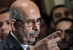 ElBaradei warns of chaos if Egypt polls go ahead   Égypt-actus   Scoop.it