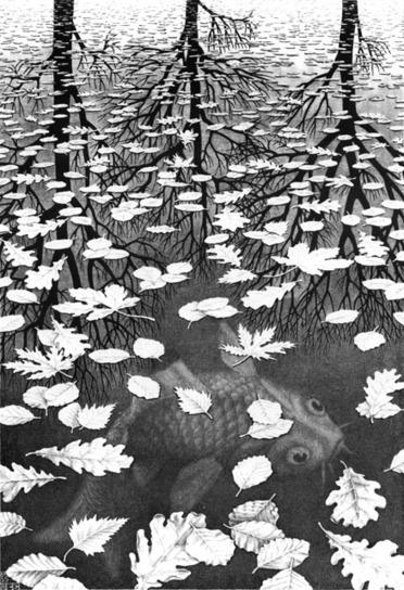 La literatura como una tercera orilla: habitar en la ambigüedad | Por: Andrea Jeftanovic | Entradas de emergencia | Scoop.it