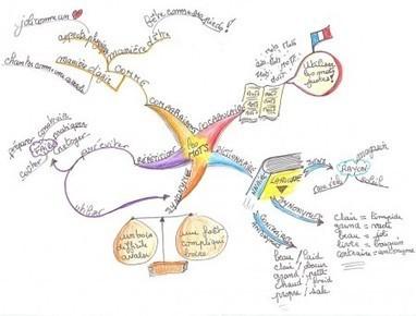 Mapping Experts   Faire ses devoirs avec une carte heuristique   Lettres et Cartes Heuristiques   Scoop.it