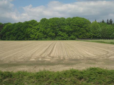 Thuis op Aarde   grondige posities   Permacultuur in Nederland   Scoop.it