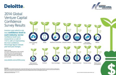 Cloud, Mobile, Healthcare And Enterprise Software Lead Deloitte's 2014 Global Venture Capital Confidence Survey | Cloud Central | Scoop.it