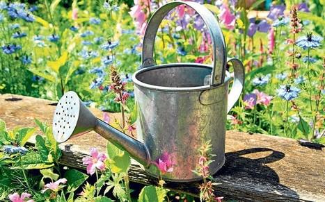 Bunny Guinness's top tips for spring gardening | Gardening | Scoop.it