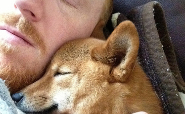 6 Ways to Show Your Furry Friends You Appreciate Them | Nature Animals humankind | Scoop.it