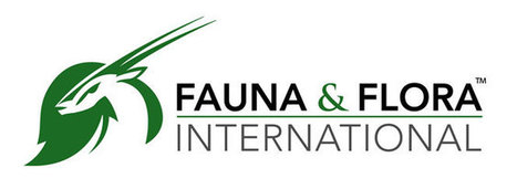 China | Fauna & Flora International | Year 3 Science: Living things in China | Scoop.it