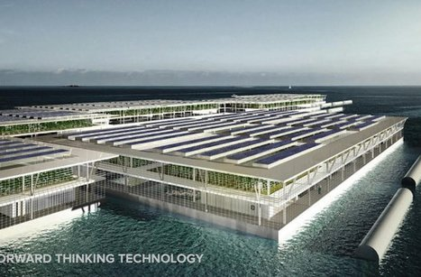 Barcelona-based design firm proposes floating farms | Vertical Farm - Food Factory | Scoop.it