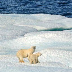 Obama: Keep Your Climate Promise | EcoAction | Scoop.it