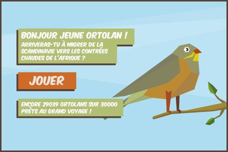 Ortolandes | La veille de Ouest Médialab | Scoop.it
