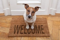 Locating and Purchasing a Pet-Friendly Home   Hollywood Homes Realty   Hollywood Residential Sales   Scoop.it