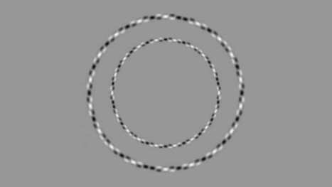 These Obviously Irregular Rings Are Actually Perfectly Round Circles | The brain and illusions | Scoop.it
