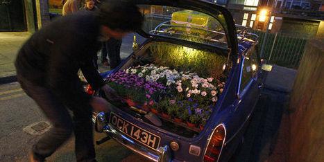 Quand les jardiniers clandestins s'attaquent aux villes... | À toute berzingue… | Scoop.it